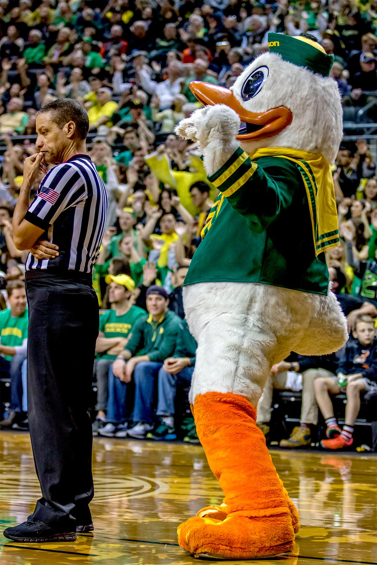 The Duck dances behind a referee. The Ducks defeated the Beavers in the civil war game, 66-57, at Matthew Knight Arena on Saturday night. Elijah Brown scored a game high of 20 points with 18 of the points coming in the first half, Paul White added 17 points. The Ducks are now 14-7 overall and 4-4 in conference play. The Ducks will next face California on Thursday Feb. 1 at 6:00 p.m. Photo by August Frank, Oregon News Lab