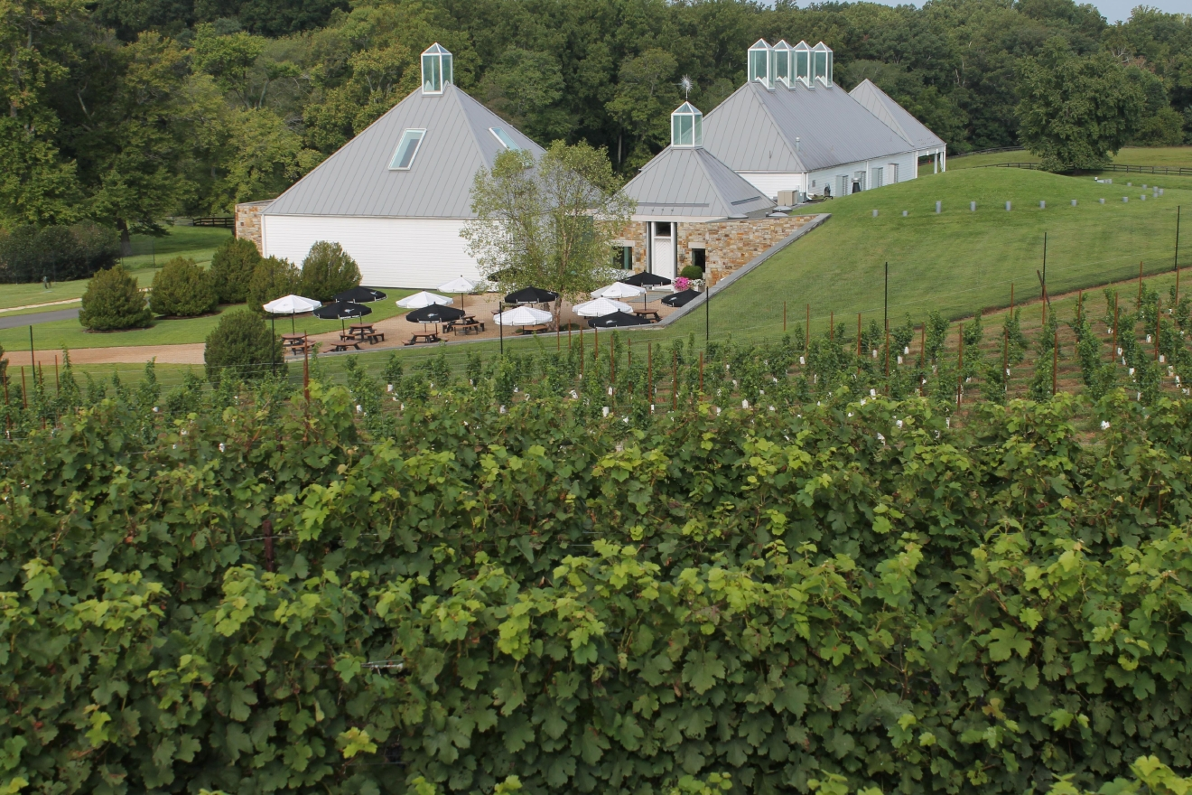 This complex and unique Middleburg Rose combines five Bordeaux varietals and should be enjoyed with charcuterie, shellfish, octopus and oily fish such as mackerel. (Image: Courtesy Boxwood Winery)