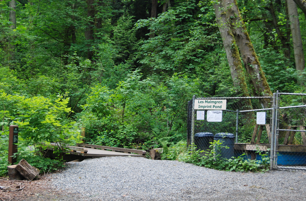 Carkeek Park covers over 220 acres of lush forest, meadows, wetlands and creeks in northwest Seattle and offers hiking trails, play areas, the historic Pipers Orchard, salmon spawning ponds and an amazing beach. With spectacular views of the Puget Sound and Olympic Mountain ranges, the park has activities for almost every Seattleite to enjoy. (Image: Rebecca Mongrain/Seattle Refined)
