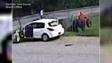 Woman caught on camera stealing returnables from Shapleigh elementary school