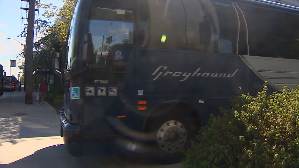 King Co  council member proposes one-way bus tickets out of