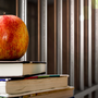 Free education for inmates stirs up controversy