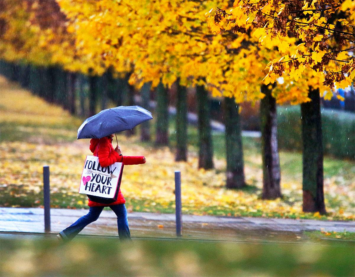 A woman walks under her umbrella in the pouring rain in a park in Frankfurt, Germany, on a grey Friday, Nov. 11, 2016.  (AP Photo/Michael Probst)