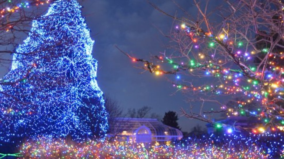 toledo zoos lights before christmas voted best in country - Christmas Lights At The Zoo