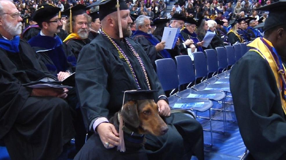 Service dog accompanies veteran at Texas A&M college graduation | WOAI