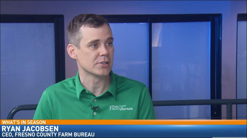 Ryan Jacobsen with the Fresno County Farm Bureau visited Great Day to talk about What's In Season: Plums.