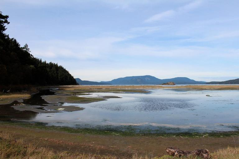Get on island time camping at Spencer Spit State Park on Lopez Island. (Image: Jeanne / https://flic.kr/p/gqW6eS)