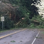 Wind storm rakes Oregon on its way to Wash. state