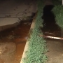 Floodwater being pumped out of basements prompts complaints in Kalamazoo