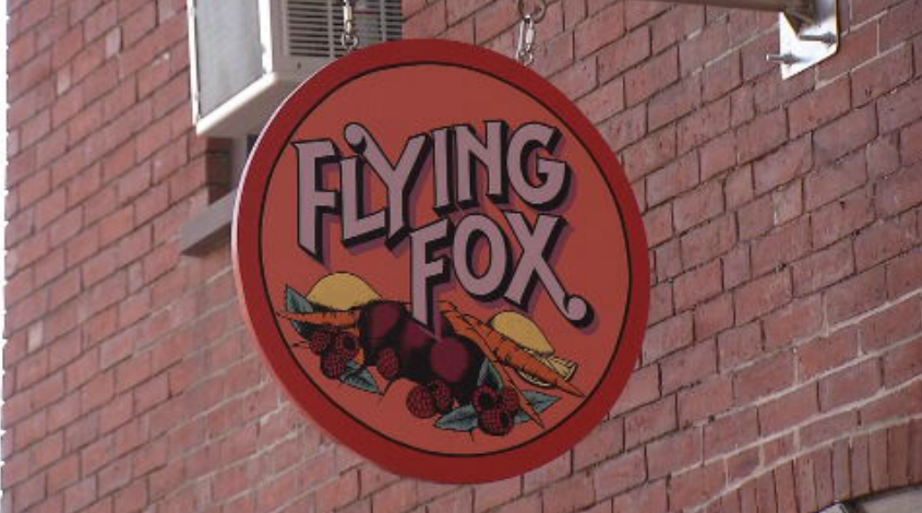 flying fox.PNG