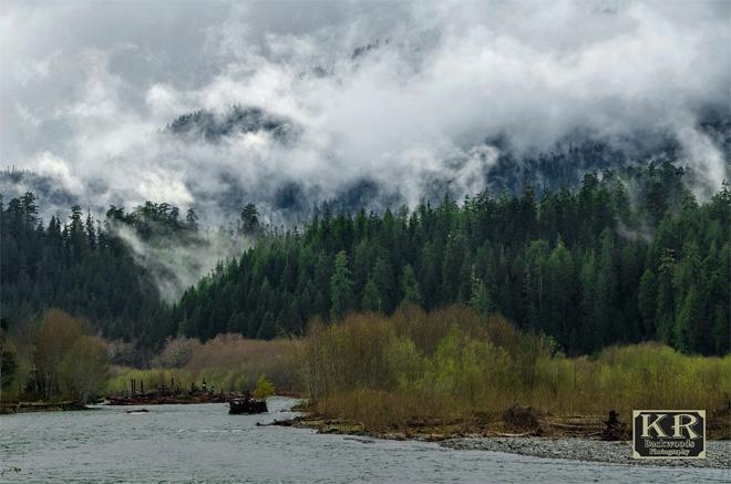 Dark and gray in the Quinault Rainforest, but the views were still beautiful!! Photo credit KR Backwoods Photography