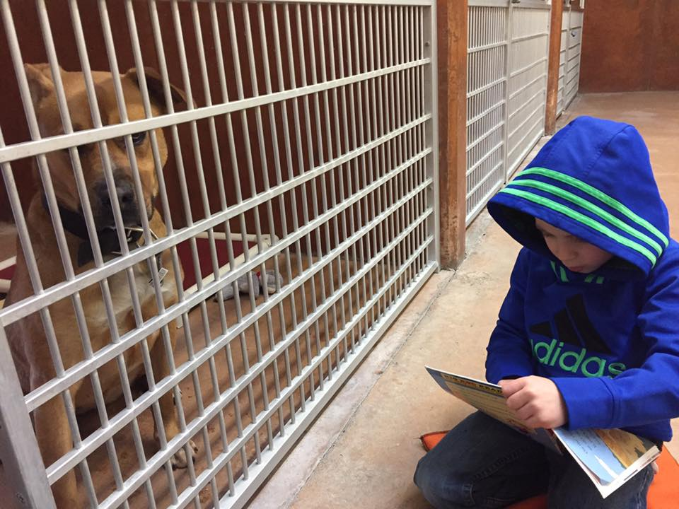 6-year-old Roman already has a strong passion to help rescued animals find forever homes. (Image: McConn family)<p></p>