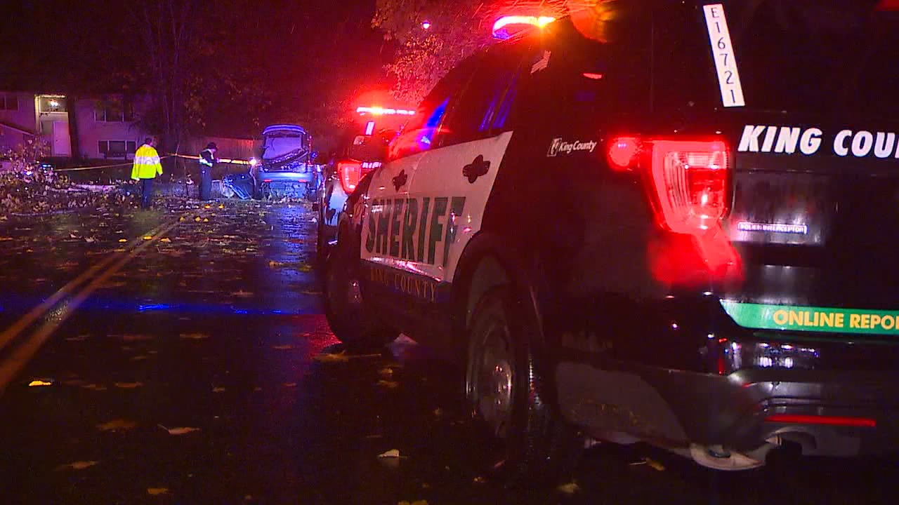 Deidre Clark was driving with her sister and her four-year-old daughter on SE 179th St.  Monday night when the tree suddenly snapped and crashed through her vehicle. (Photo: KOMO News)