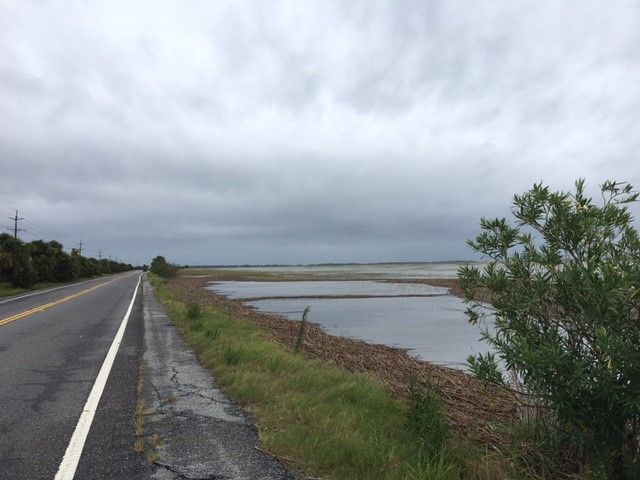 Water levels begin to rise along Tybee Island's Highway 80 on Sunday. (WTGS/Shelbey Roberts)