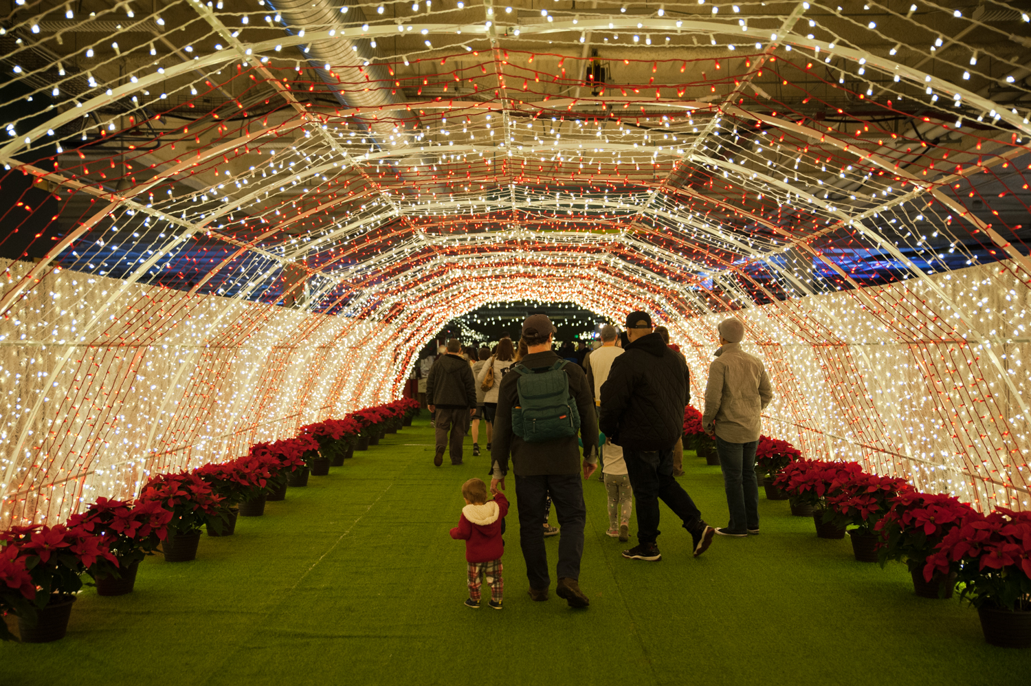 Lumaze Lost in Lights, the all-indoor Christmas festival and market, makes its debut at Pier 91 on Seattle's Waterfront (aka the cruise ship terminal) this weekend and runs through January 4, 2020. Attendees will find live music, an interactive light maze, vendor market, food , drink and plenty of photo opportunities.{ }. (Image: Elizabeth Crook / Seattle Refined)