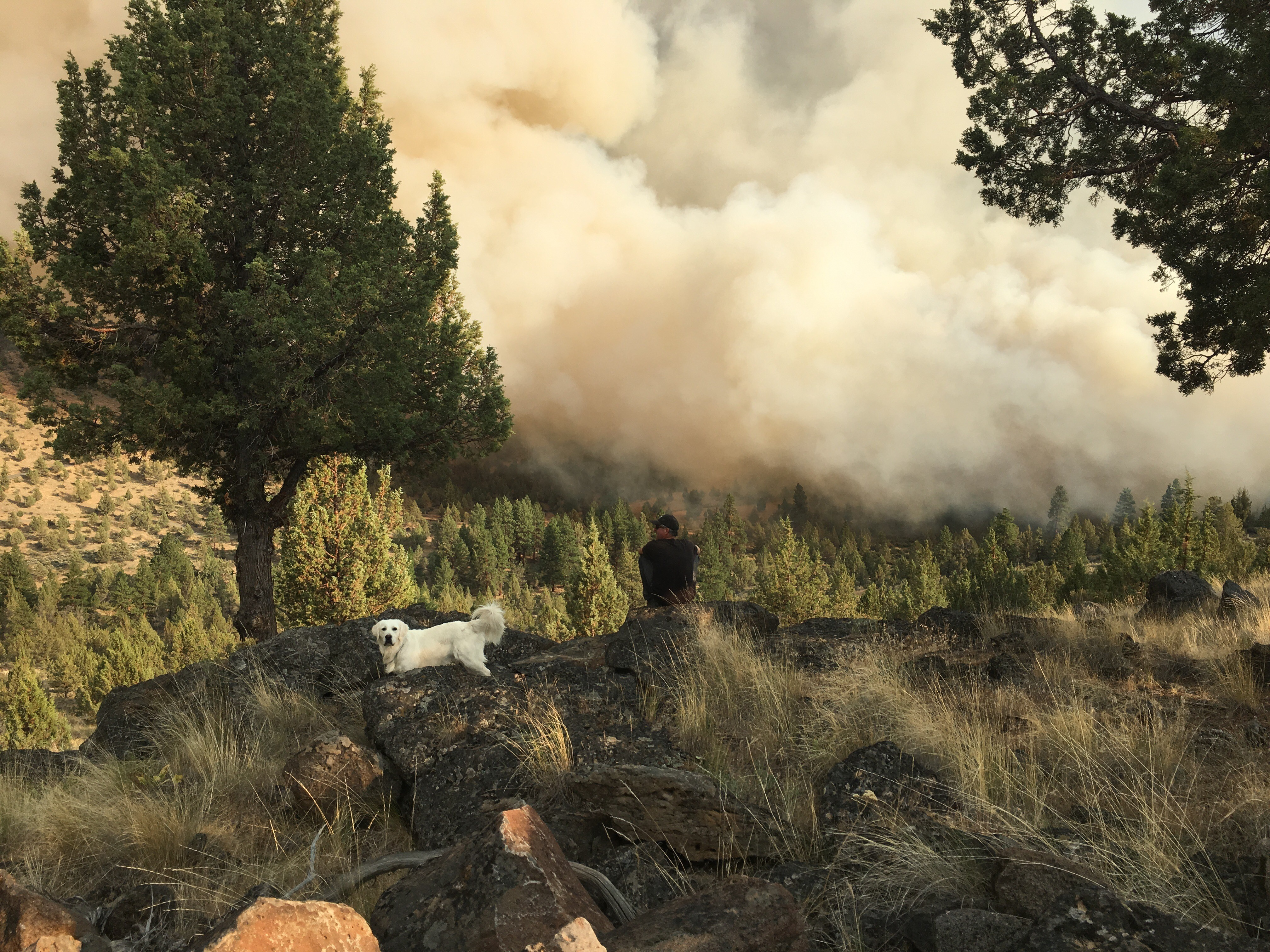 Graham Fire photo from Darren Verbout