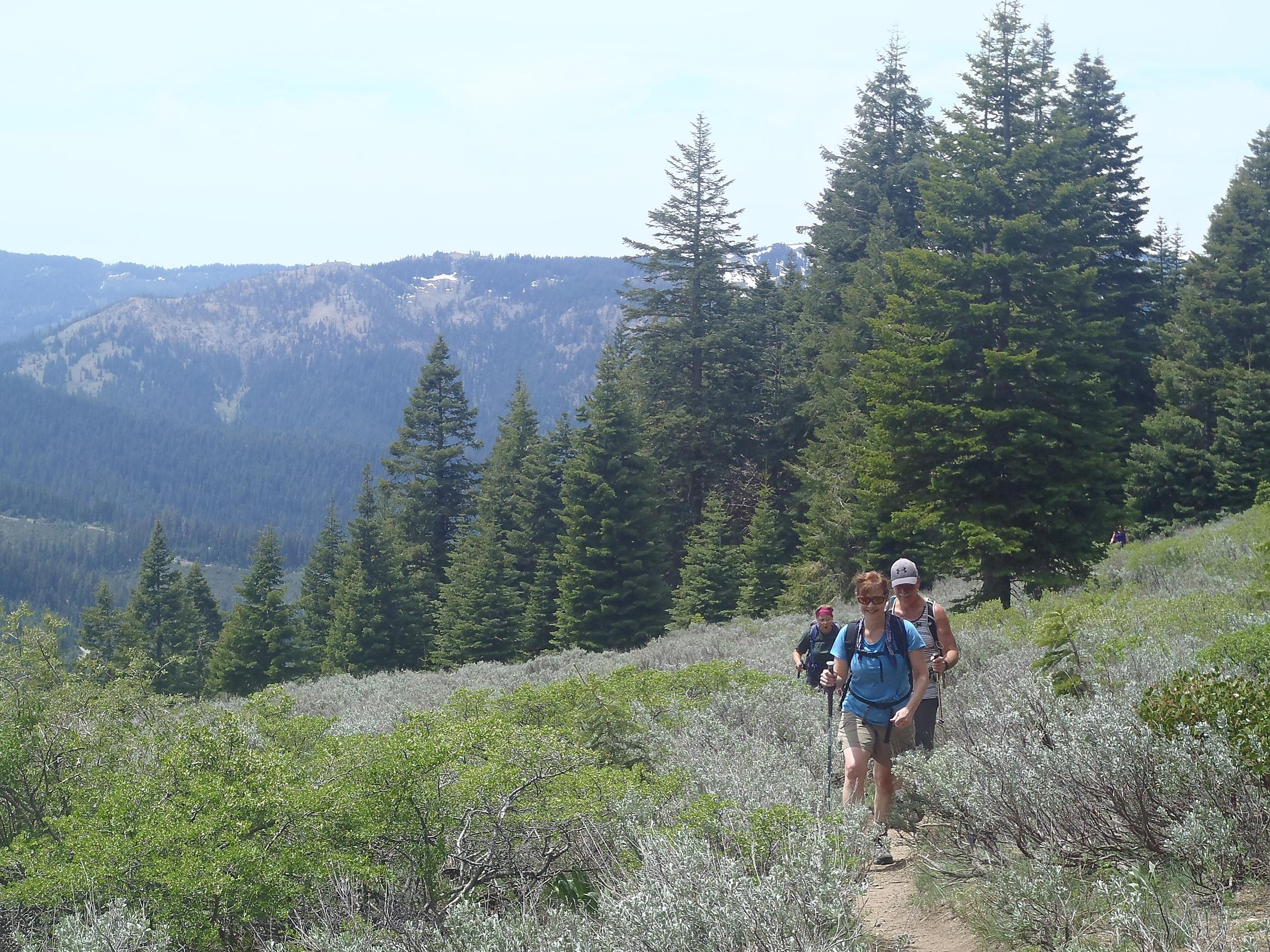 Hikers make their way across one of the many meadows along the Wagner Butte Trail. Photo by Lee Juillerat