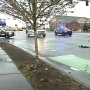 Police: Pedestrian hit by car, critically injured