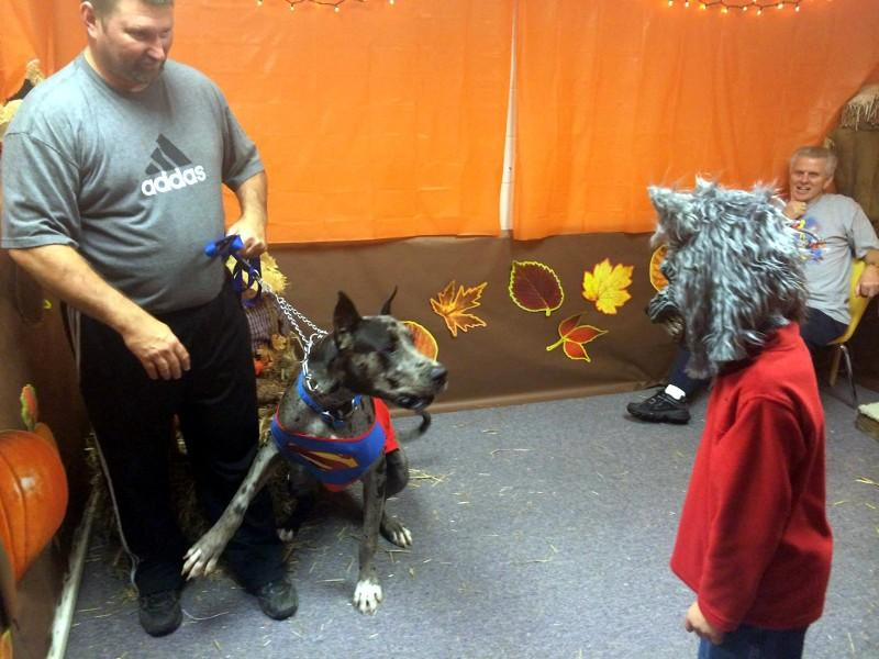 Superman Great Dane was a little scared of the werewolf!
