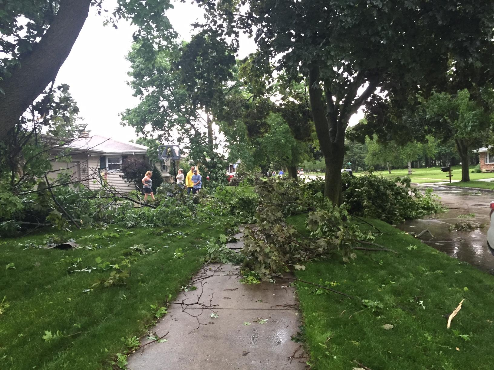 Trees down on the sidewalk on Fidelis Street near College Avenue in Appleton, June 14, 2017. (WLUK/Alex Ronallo)