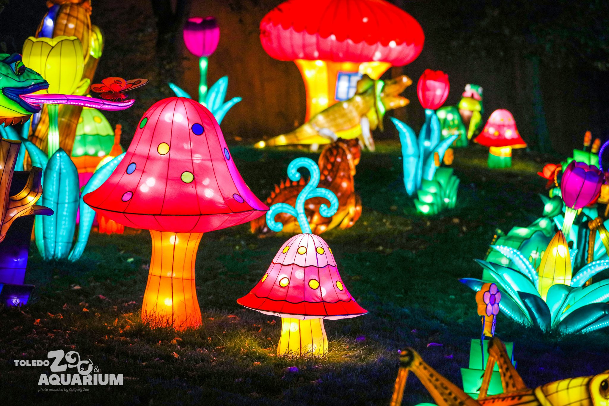 Toledo Zoo's Luminous Nights will debut September 29 (Courtesy: Toledo Zoo)
