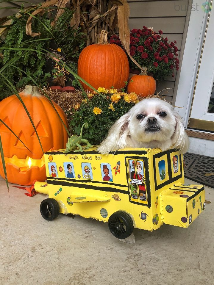 All aboard the Magic School Bus! (Image: Courtesy Jaclyn Krakowski)