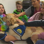 How a dog named Bruce is helping support middle school students in Lake Stevens