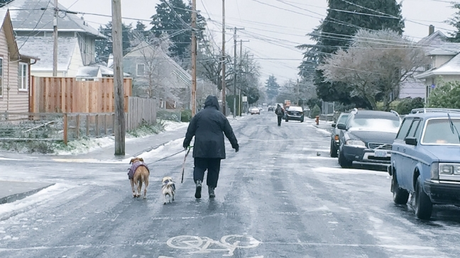 Photos After Snow Ice Covers Portland Metro Streets And