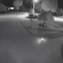 GB police release surveillance video in lawn ornament thefts