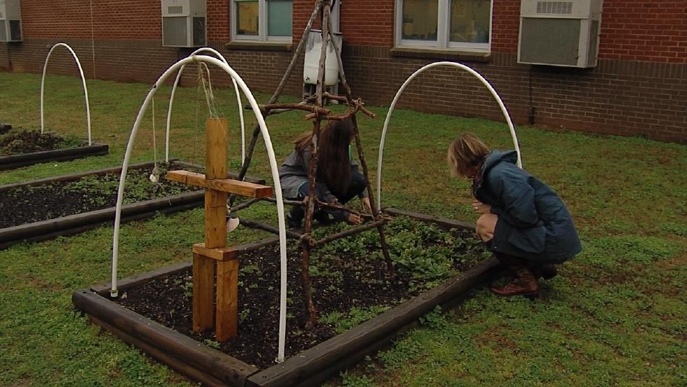 Tuscaloosa city schools recognizes national board for Landscaping rocks tuscaloosa al