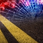 1 dead in Barry County after an accident with a tree
