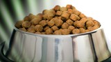 Multiple brands of dog food recalled for high levels of Vitamin D