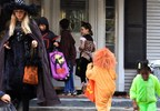 trick or treat halloween MGN 3.jpg