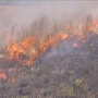 Prescribed grass fires protect the Oklahoma prairie