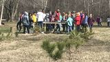 Midland holds annual Arbor Day educational event