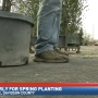 Nashville landscaper says to hold off spring planting