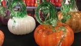 Leave the carving tools at home when you visit the Eugene Glass Pumpkin Patch
