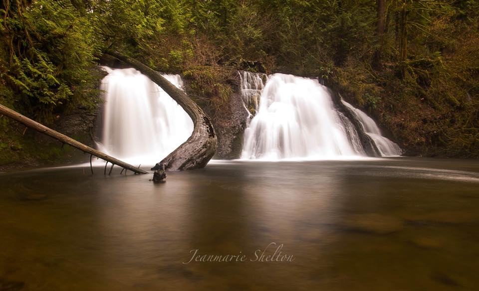 Jeanmarie Shelton  - Cherry Creek Falls
