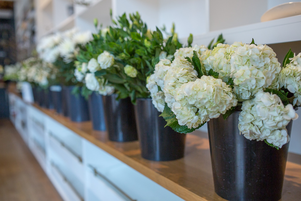 Beautiful winter white blooms at the London Plane. (Image: Paola Thomas / Seattle Refined)