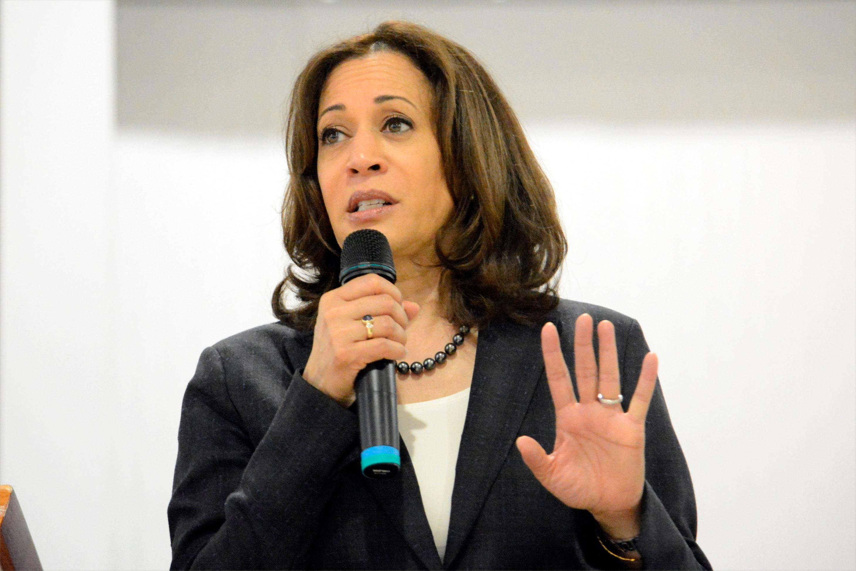 In this March 9, 2019, photo, Sen. Kamala Harris, D-Calif., speaks during an event in St. George, S.C. Elizabeth Warren is betting voters are looking for a policy guru. (AP Photo/Meg Kinnard)