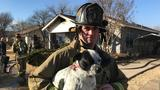 Dog rescued from house fire