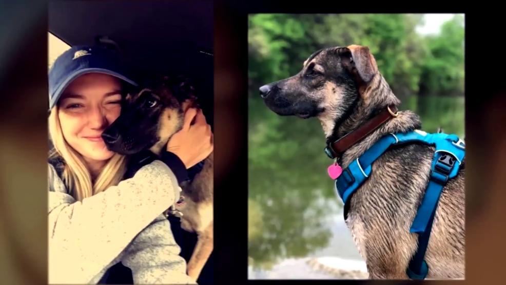Third dog dies after swimming in Lady Bird Lake | KEYE